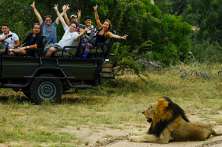 Into Africa High End Incentive Case Study