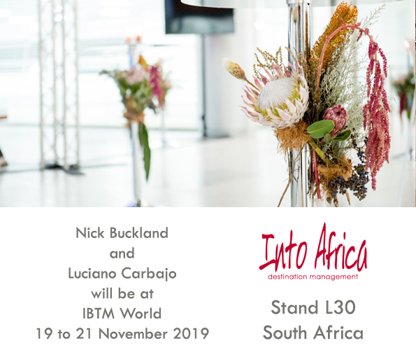 Into Africa will be at IBTM World