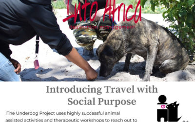 Introducing Travel with Social Purpose