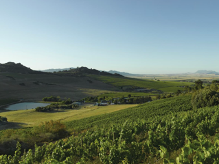 view of a valley with vineyards and a dam