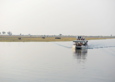 Viewing wildlife from the deck of a boat on the Zambezi River